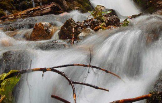 """La cascade """"Urlatoarea"""""""