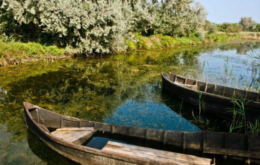 En bateau dans le delta du Danube