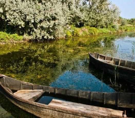 Bateaux dans le Delta