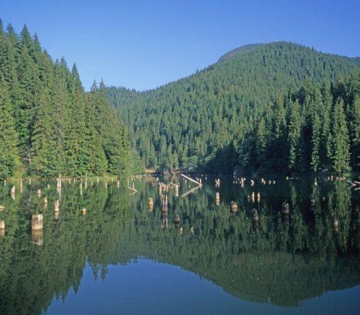 Lac Rouge Roumanie