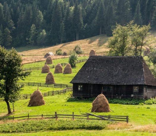 Maisons traditionnelles dans les Apuseni