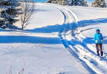 Ski de randonnée dans les Monts Apuseni