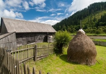 L'agriculture en Roumanie