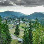 Bois et forêts de Roumanie
